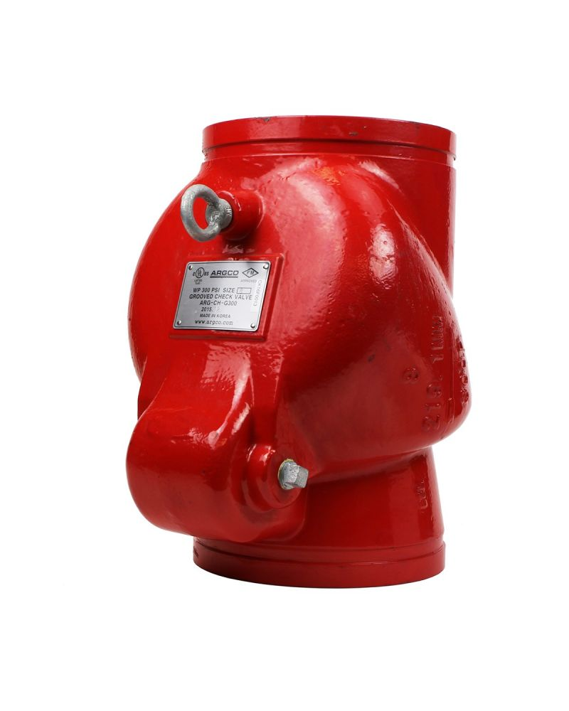 """Fire Protection Grooved Check Valve 2"""" Cast Iron Body"""